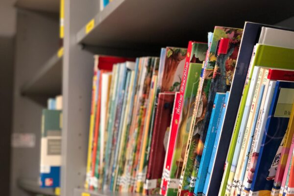 Enquesta pública per ampliar el catàleg de la biblioteca de Ròtova